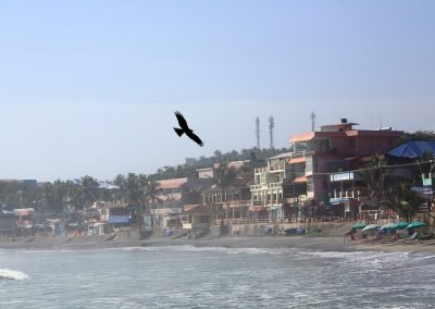 Kovalam Beach Kerala India